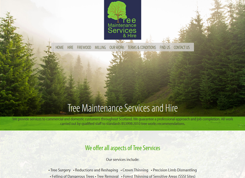 Tree Maintenance Services and Hire